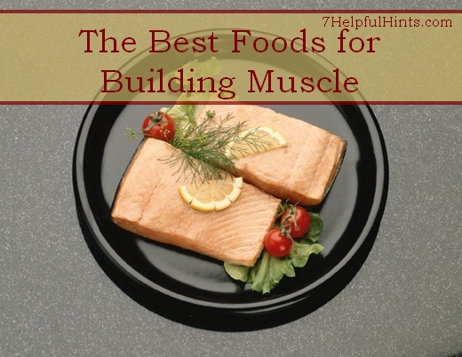 best foods for building muscle
