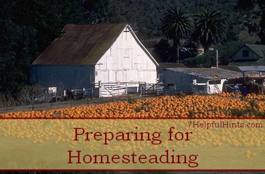 preparing for homesteading